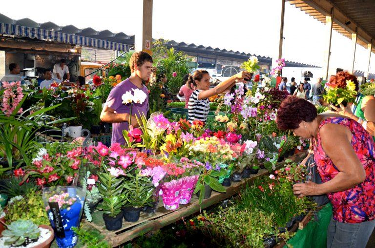 Ceasa RJ: Mercado de Flores